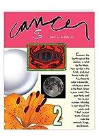 がん誕生日ユーモアGreeting Card 1 Jumbo Birthday Card & Enve. (J9445)