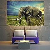 N / A Pintura sin Marco Decoración del hogar Pintura Lienzo Pintura Animal Elefante Tigre águila Cartel Pintura Sala Dormitorio decoración pinturaZGQ5389 80X120cm
