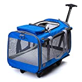 Kismaple Pet Carrier with Wheels, Telescopic Handle, Fleece Mat Trolley Carrier Folding Breathable Rolling Bag for Dogs, Cats, Rabbit Kittens Puppies Stroller - Travel Outdoor, 51 * 33 * 31cm (Blue)