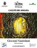Cascate del Niagara. Giovanni Nascimbeni. Pittura materica. Ediz. illustrata