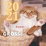 2021 Calendario dei Gatti Rossi e Grossi: 12 mesi con bellissimi micioni rossi