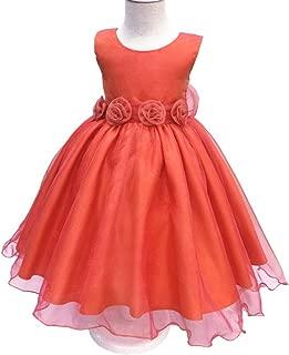 LUKEEXIN 2-10 Year Old Girls Mesh Skirt Kids Party Wedding Dresses