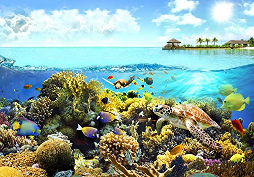 decomonkey Fototapete Aquarium 400x280 cm Design Tapete Fototapeten Vlies Tapeten Vliestapete Wandtapete Wand Schlafzimmer Wohnzimmer Kinderzimmer Korallenriff Fisch Ozean