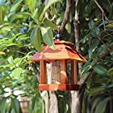 Bird Feeders Plans