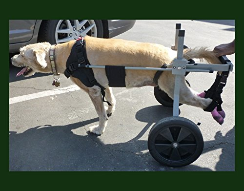 Dog Wheelchair for Large Dog...