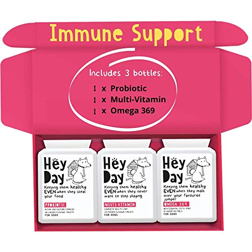 Hey Day Pets Immune Support Bundle Box - Immunity Health Supplements for Dogs - Formulated with Healthy Probiotics – Natural Ingredients – Essential Immune Support for Dogs (300 tablets)