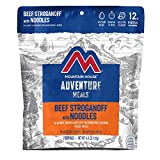 Mountain House Beef Stroganoff with Noodles | Freeze Dried Backpacking & Camping Food | 2 Servings