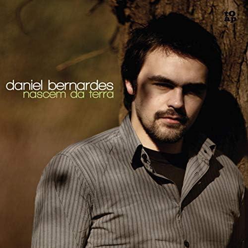 Daniel Bernardes