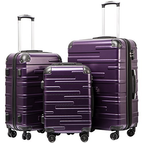 Coolife Luggage Expandable(only 28') Suitcase 3 Piece Set with TSA Lock Spinner 20in24in28in (purple)
