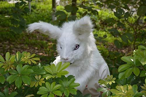 Hochwertige Materialien Animal Furry Mask Persönlichkeit Tiermasken Graues Kaninchen Beweglicher Mund Kunstpelz Kostüm Maske Kopf Hals Tiermasken Tierhalsmaske (Color : White)