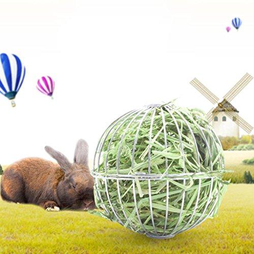 Hergon - Bola de heno Redonda de Acero Inoxidable para Colgar, hámster, Rata, Conejo, Juguete para Mascotas