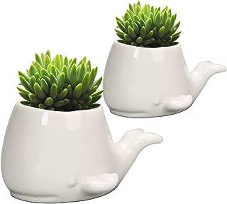 GeLive Set of 2 Whale White Ceramic Succulent Planter Flower Pot Window Box Decorative Container (Set of 2 Whale)