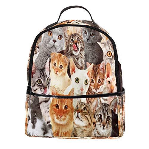 KAMEARI Rucksack für Schule Viele Katzen Hintergrund Pfand Fotos Casual Daypack für Reisen mit Flasche Seitentaschen