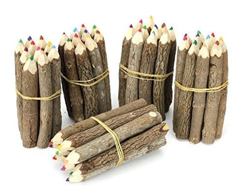 Farang Thai Albero Ramo Ramoscello Pencil Bundle - Extra Small Size - Multicolore - Multipack 5 Bundle