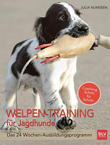 Welpen-Training für Jagdhunde: Das 24-Wochen Ausbildungsprogramm (BLV)