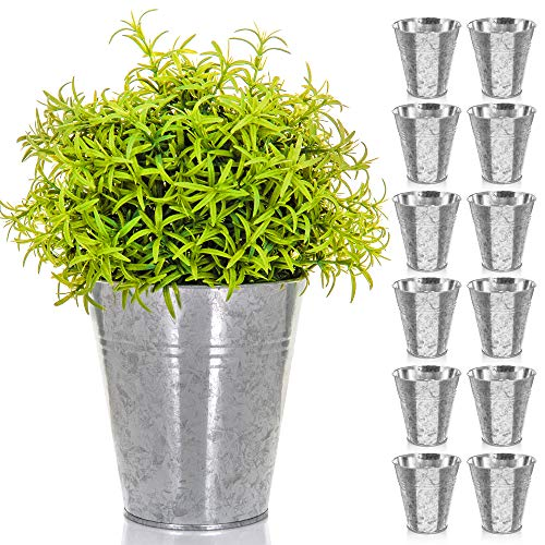 LIVIVO Pack of 12 Galvanised Iron Metal Flower Pots in Weather Resistant Metal for Indoor or Outdoor Use, Ideal for Plants, Herb Collection, Flowers and Shrubs