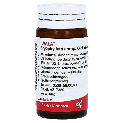 BRYOPHYLLUM COMP.Globuli 20 g