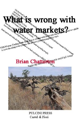 What is wrong with water markets?