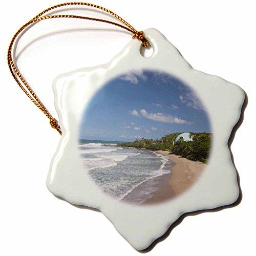 3dRose orn_74498_1 Puerto Rico West Coast Rincon Domes Beach Walter Biblike Snowflake Decorative Hanging Ornament, Porcelain, 3-Inch