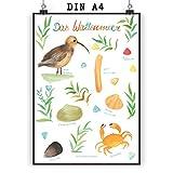 Mr. & Mrs. Panda Wanddeko, Wandposter, Poster DIN A4