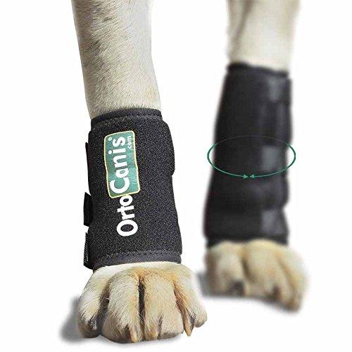Ortocanis Karpalbandage für Hunde - größe M - Umfang 14-16 cm