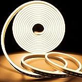 Neon Led Flessibile, 16.4 Ft/5m Luce A Fune A Led In Silicone IP65 Striscia Led Impermeabile Per Interni Ed Esterni Decorazioni Per La Casa (Include Adattatore Di Alimentazione E Dimmer)