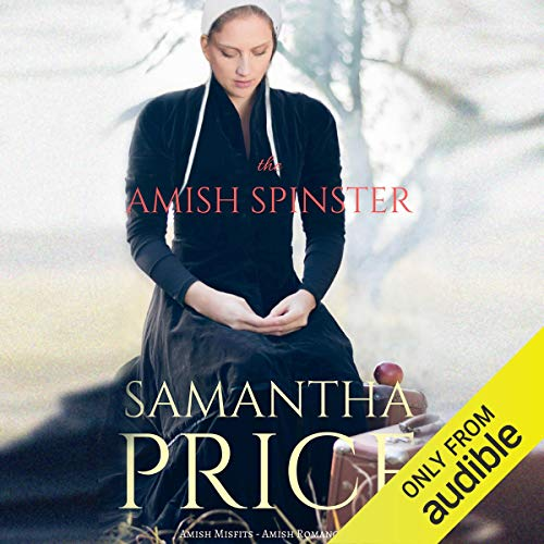 The Amish Spinster cover art