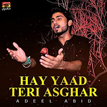Hay Yaad Teri Asghar - Single