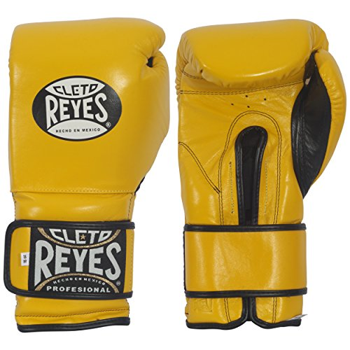 which is the best fighting boxing gloves in the world