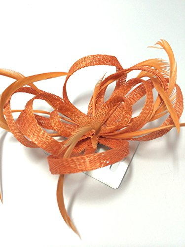 COLOURED LOOPED HESSIAN NET & FEATHER FASCINATOR BEAK CLIP BROOCH PIN WEDDINGS (Orange) by Unknown