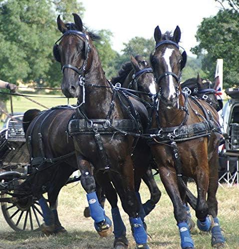 Harnais ZILCO ELITE à 4 chevaux - chevaux de trait, Z Grip avec arrêtoirs