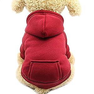 Idepet Sweat à Capuche pour Chat Vêtements pour Chien en Coton avec Manteau d'hiver et Poche extérieure