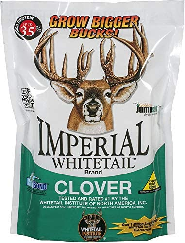 Whitetail Institute Imperial Clover Deer Food Plot Seed for Spring or Fall Planting Promotes product image