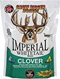 Whitetail Institute Imperial Whitetail Clover 18...