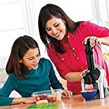 Duwen PortablePortable Uso doméstico Fruit Soft Soft Machine Frozen Yogurt Machine Sorbet con temporizador de cuenta regresiva, para el postre de fruta congelada