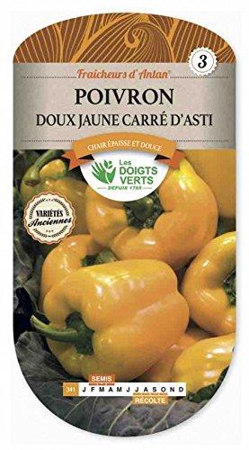 Les doigts verts Semence Poivron Doux Jaune Carré d'Asti