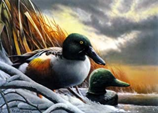 MINNESOTA DUCK STAMP Signed and Numbered Limited Edition print by Kevin Daniel 9