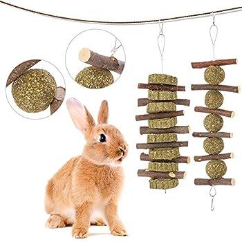Popuppe 2 Pièces Jouets à Mâcher Branches de Pommier Naturel Gâteaux d'herbe Boule d'herbe Jouets pour Petits Animaux Lapins Hamsters Chinchillas Cobayes Cochons d'Inde
