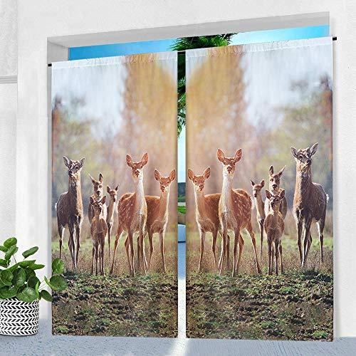 Pro Space Outdoor-Vorhänge für Terrasse – 127 x 213,4 cm, bedruckt, wasserdicht, Fenstervorhang mit Stangenaufhängung, für Pergola, Veranda oder Balkon 50