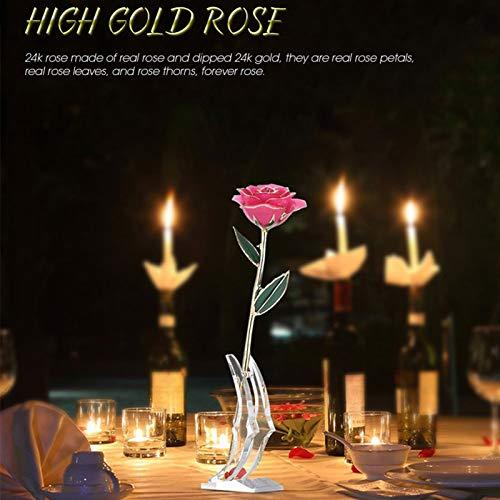 KUIDAMOS 24 Karat Gold getauchte Rose, 24 Karat Gold getauchte echte Roségoldfolie Rose Rote Rose Valentinstag Blumengeschenke für Sie