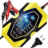 Chargeur de Batterie 6A 12V/24V Chargeur Auto Moto avec Fonction Réparation Protection Multiple LCD Écran pour Lithium, Plomb-Acide, LiFePO4