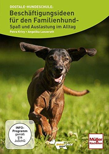 Beschäftigungsideen für den Familienhund- Spaß und Auslastung im Alltag
