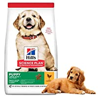 OPTIMAL MINERAL LEVELS for healthy skeletal development in large breed puppies WITH COMPLETE QUALITY proteins and L-carnitine to support pet's lean muscle CLINICALLY PROVEN ANTIOXIDANTS for a healthy immune system MADE WITH HIGH QUALITY INGREDIENTS f...