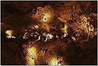 HDカールズバッド洞窟群国立公園ニューメキシコ-フォーメーション9001629(52x38cmの大人向けプレミアム500ピースジグソーパズル)