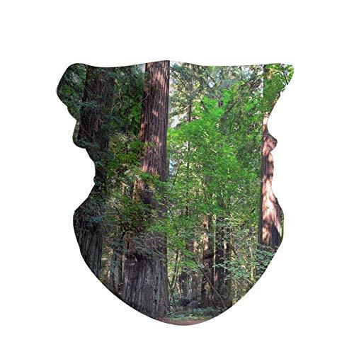 HAOZI 2 piezas 16 en 1 tocado para hombres y mujeres, yoga, deportes, viajes, entrenamiento, diademas anchas, polaina, bandana, pasamontañas, turbante de pelo, bufanda, color Redwoods, tamaño 50 CM x 25 CM