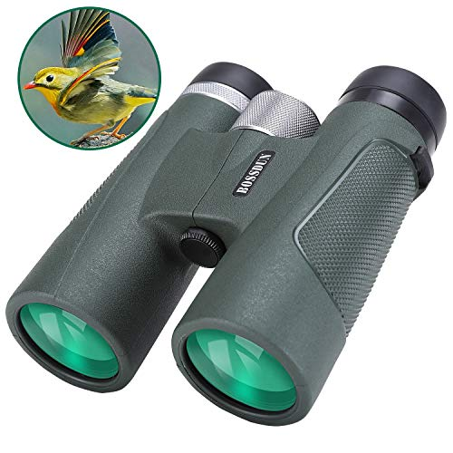 classement un comparer Binoculars 10×42 – Open binoculars, contrast, bright, water repellent, adults …