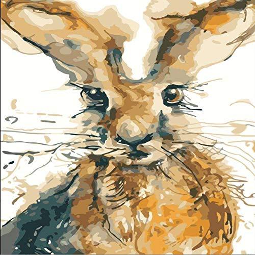 Thfff Abstraktes Kaninchen-Gemälde zum Selbermachen, handgemaltes digitales Ölgemälde, Heimdekoration, Malerei nach Zahlen, auf Leinwand, Geburtstagsüberraschung