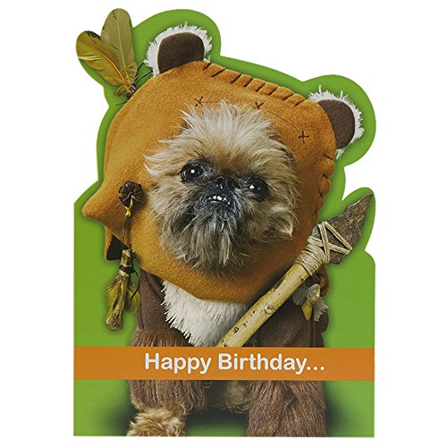 Hallmark Humour Star Wars Ewok Card - Medium