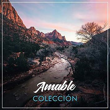 # 1 Album: Amable Colección