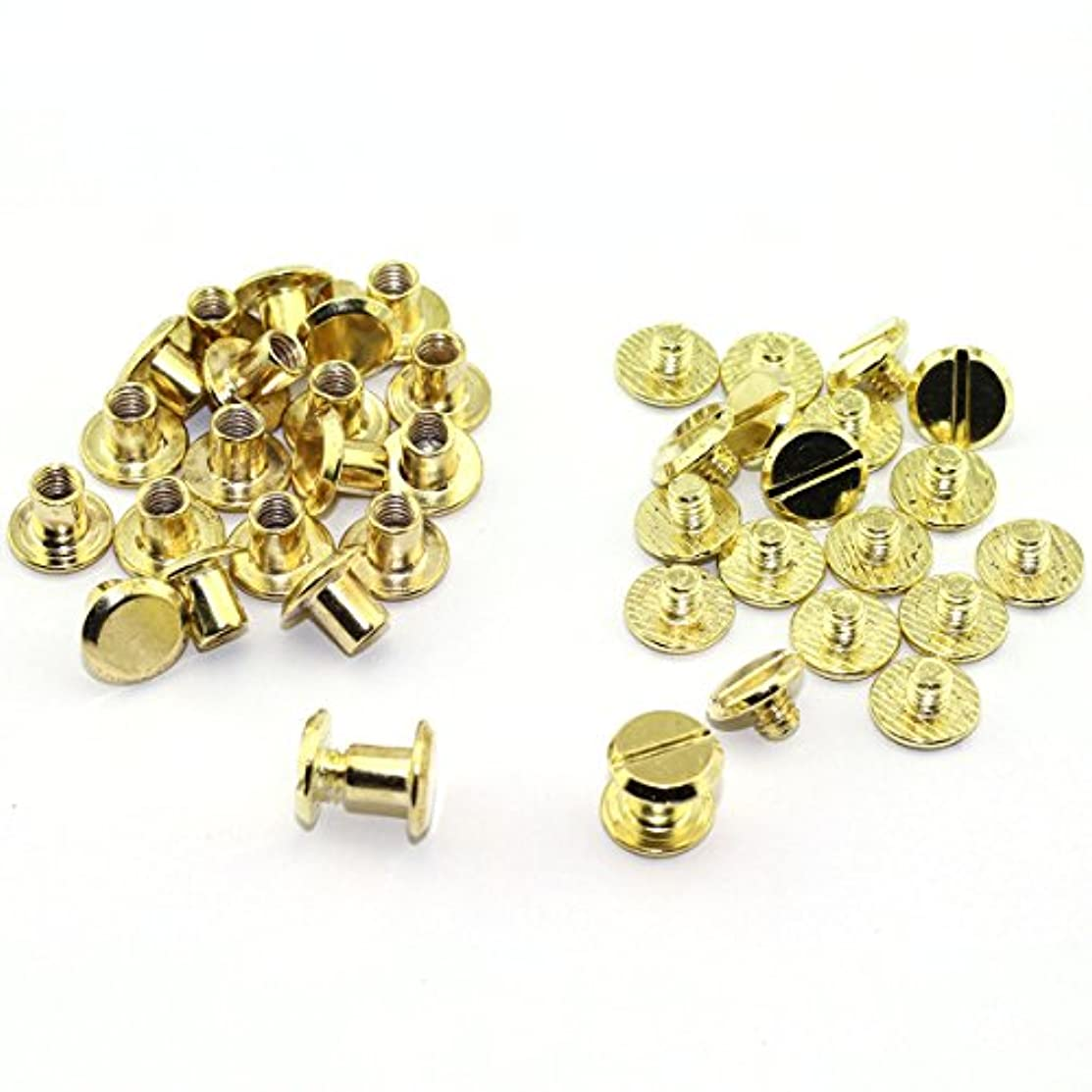 100 Pack Gold Chicago Screws Metal Accessories Carbon Steel Nail Rivet Chicago Button for DIY Leather Decoration Document Book Album Bookbinding Round Flat Head Stud Screw